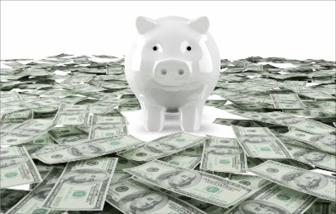 money box pig credit bank savings with border